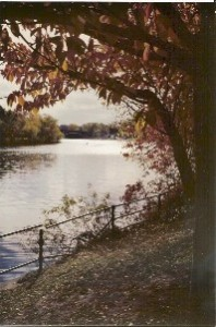 charles_river_in_fall